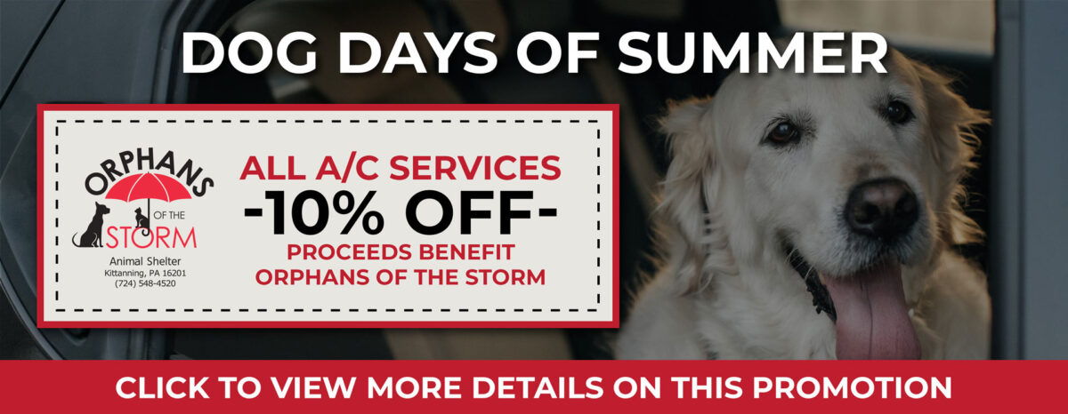 Dog Days of Summer Slider