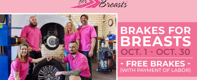 Brakes For Breasts Graphic